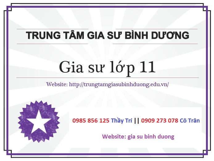 day-kem-tai-nha-lop-11-binh-duong